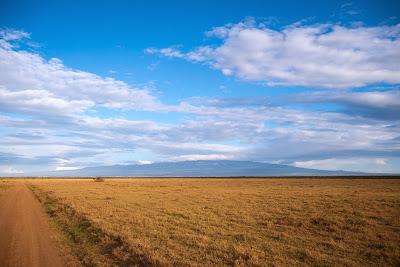 Samburu-Sweetwater-1010268.jpg