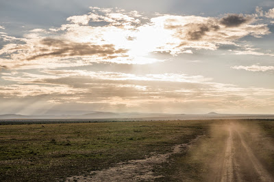 Samburu-Sweetwater-1010270.jpg
