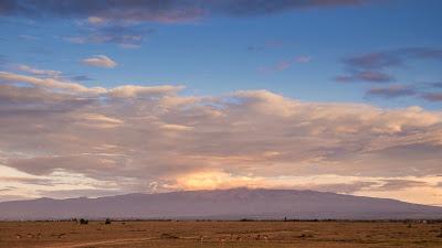 Samburu-Sweetwater-1010271.jpg
