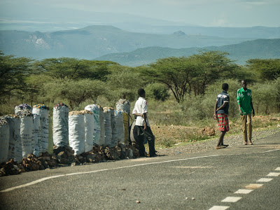 Samburu-Sweetwater-1120654.jpg