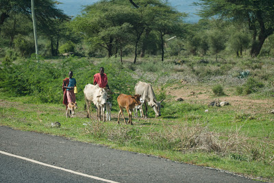 Samburu-Sweetwater-1120662.jpg
