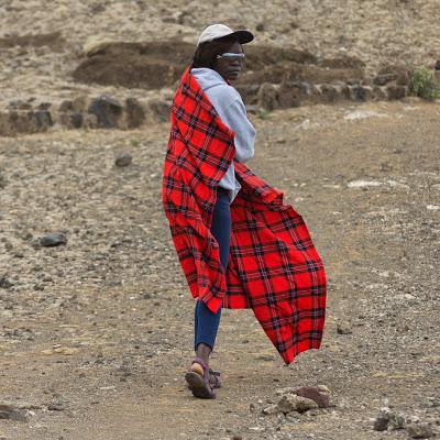 Amboseli-03475.jpg
