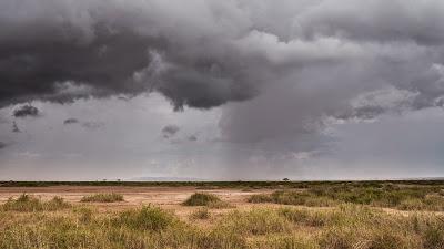 Amboseli-1010386.jpg