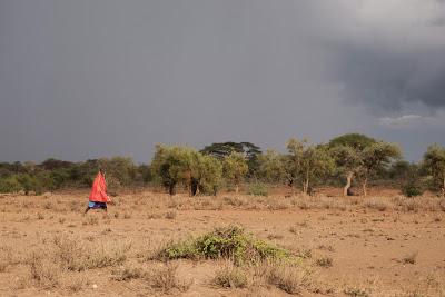 Amboseli-1010486.jpg