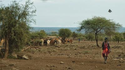 Amboseli-1120901.jpg
