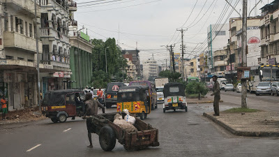 Amboseli-Mombasa-1010598.jpg