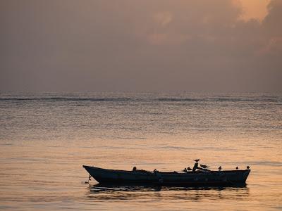 Diani-Beach-1130445.jpg