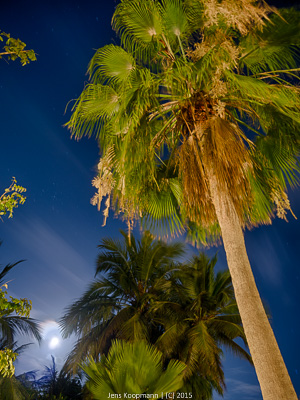Diani-Beach-1130874_HDR