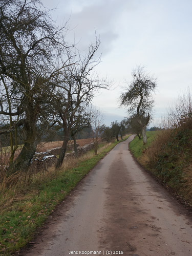 Dodenburg-04198