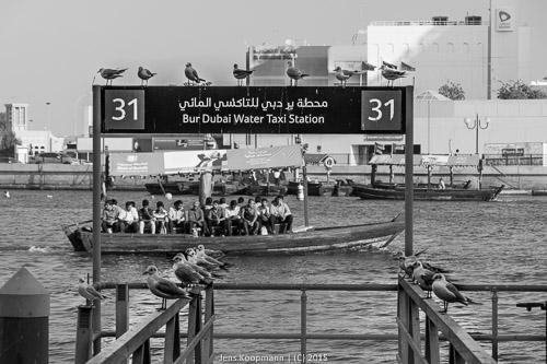 Dubai-04547