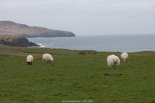 Irland-00689
