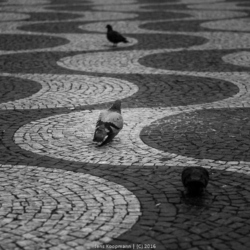 Lissabon-052