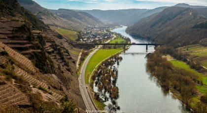 Europas steilster Weinberg - direkt vor der Haustür