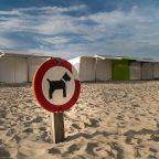 Urlaub an der Belgischen Küste – Tag 1 – Ankunft in Blankenberge