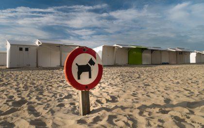 Urlaub an der Belgischen Küste - Tag 1 - Ankunft in Blankenberge