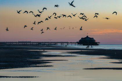 Urlaub an der Belgischen Küste – Tag 11: Strandtag in Blankenberge