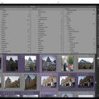 Excire Search Pro – Eine Revolution in der Verschlagwortung von Fotos?