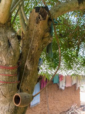 reisebericht kenia 2014 teil 12 dorf und nachtleben an der k ste kenias. Black Bedroom Furniture Sets. Home Design Ideas